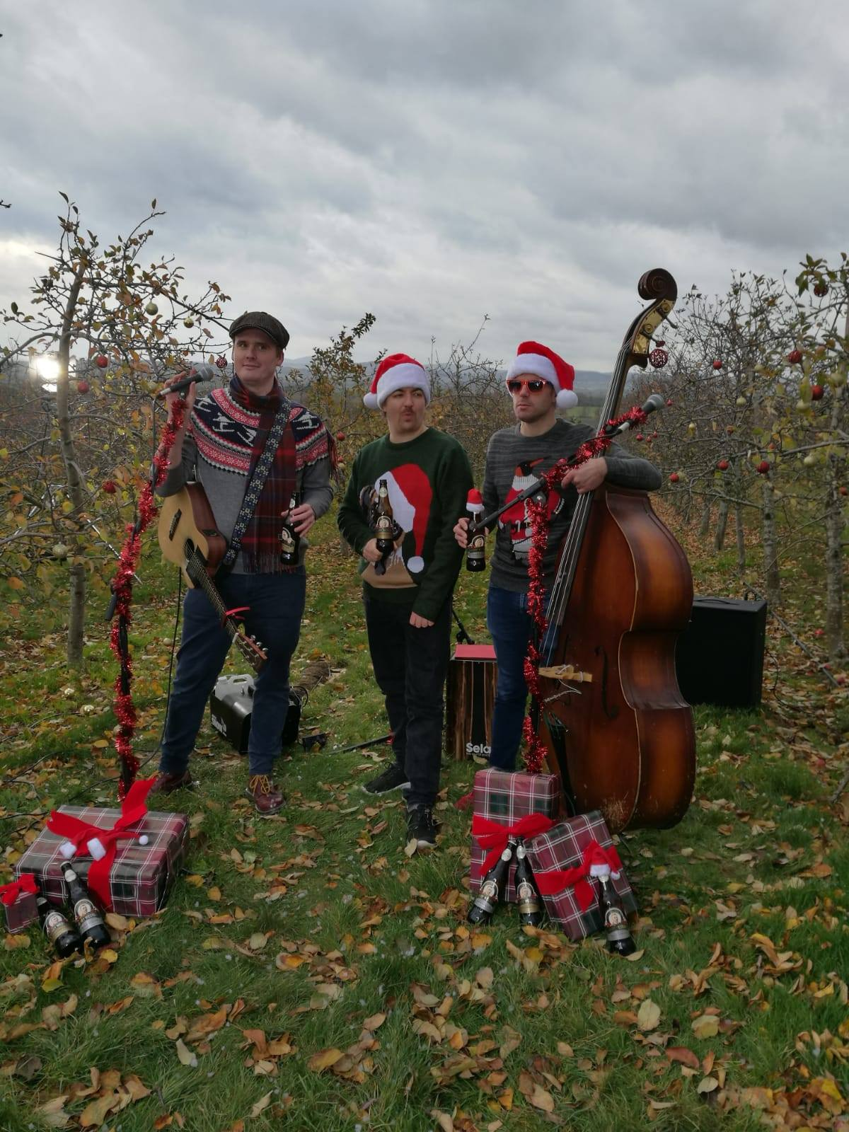 Thrill Collins Christmas jumpers Westons Cider orchard...