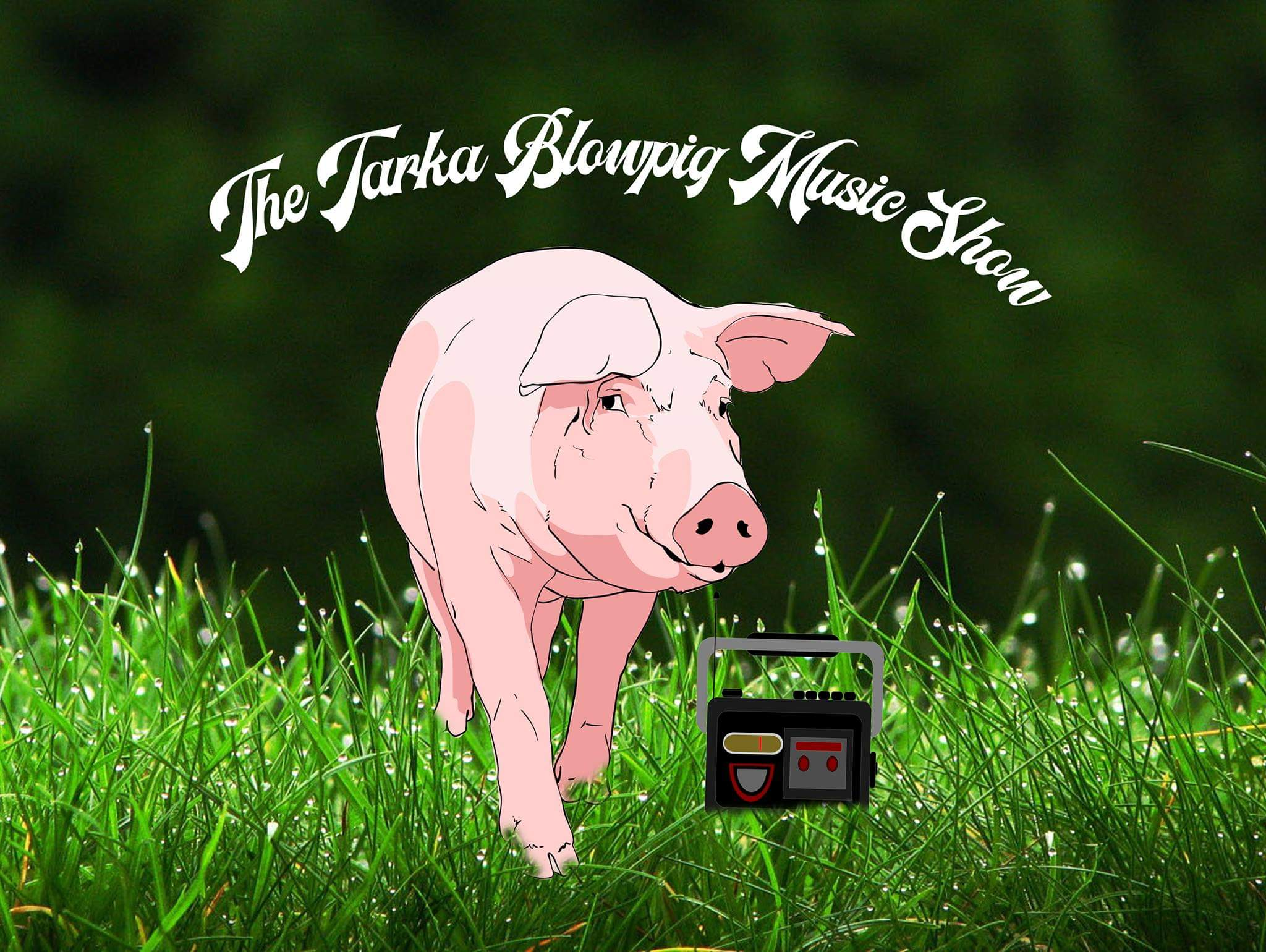 The Tarka Blowpig Music Show