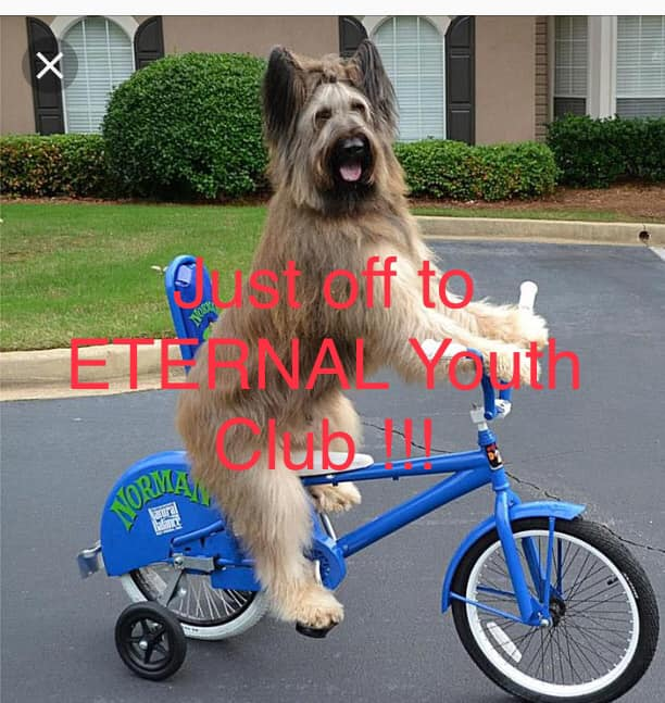 First and all new Eternal Youth Club session tomorrow showcasing local musicians...