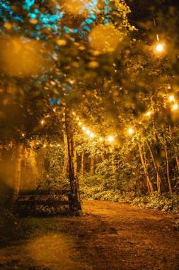 Lost Village news from @lostvillagefest: Follow the light…