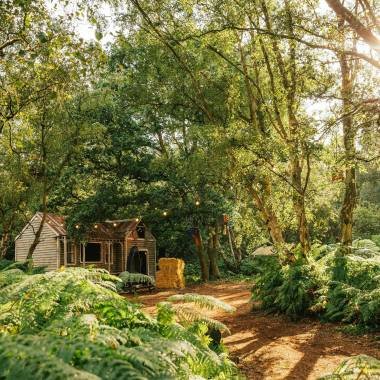 Lost Village news from @lostvillagefest: The home of old soul and forgotten classics… Will you find the Bureau of Lost?