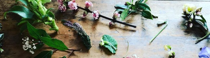 Brighton Festival news: Our friends at The Garden House Brighton offer an inspiring mix of workshops, ta…