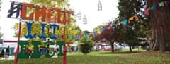 Cheltenham Festivals news :