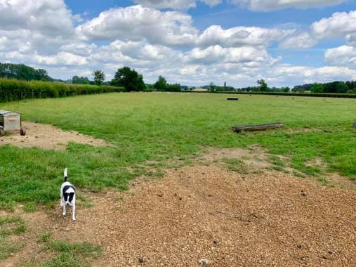 Cropredy news : Wonderful afternoon down on Broad Meadow, our brand new glamping field!…