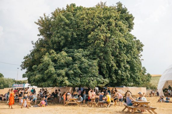 STANDON CALLING news: Our Green Pledges – Standon Calling