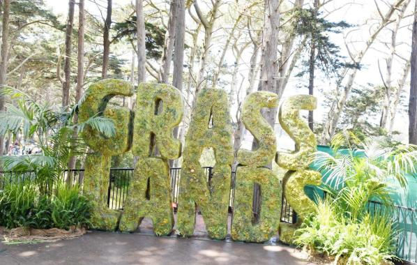 NME Festival blog: Outside Lands becomes first major US festival to sell weed legally