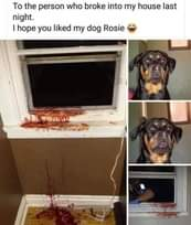 """Image may contain: text that says """"To the person who broke into my house last night. I hope you liked my dog Rosie ചരി"""""""